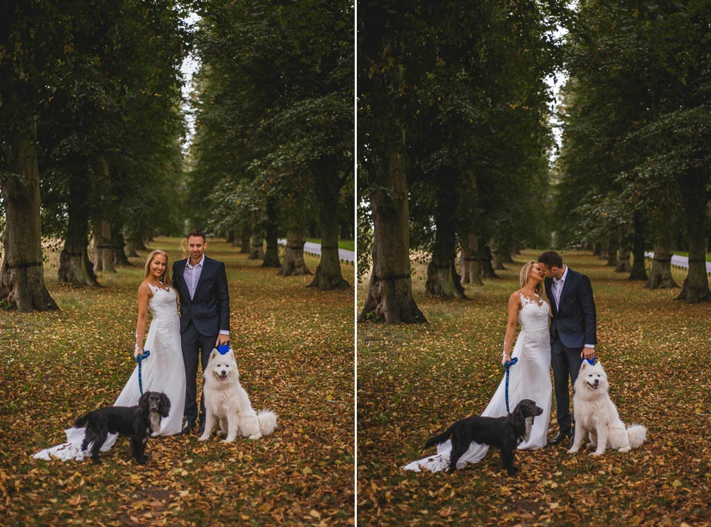 Bride and groom walking their dogs at Clumber Park